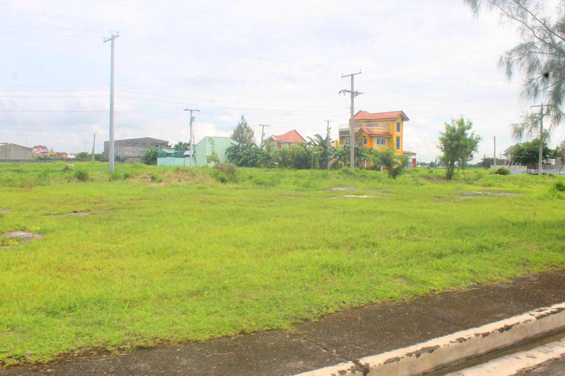 Don_Jose_De_Real_Cabanatuan_Nueva_Ecija_Residential_Lot_for_Sale_15.jpg