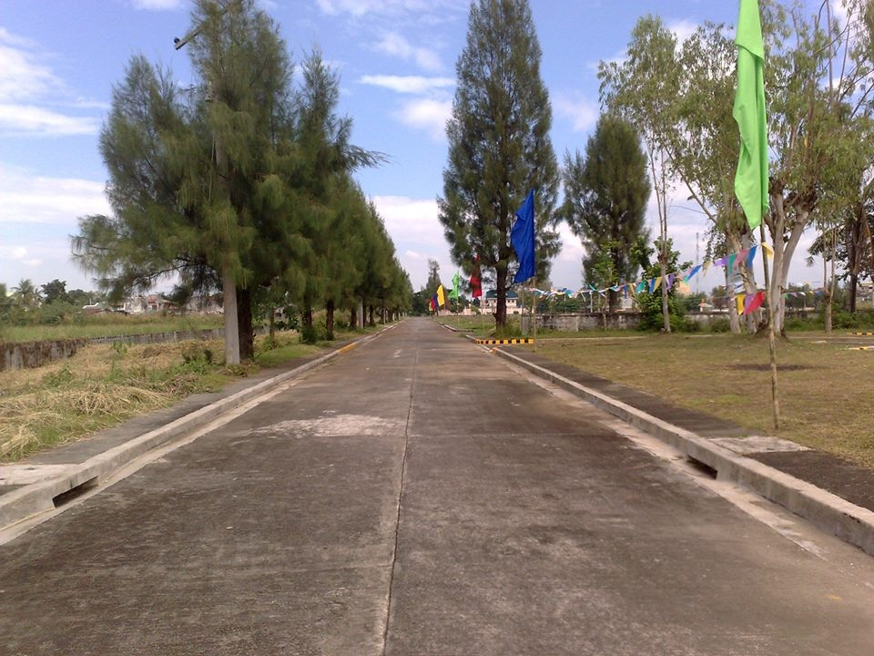 Vista_Verde_Urdaneta_City_Pangasinan_Residential_Lot_for_Sale_4.jpg